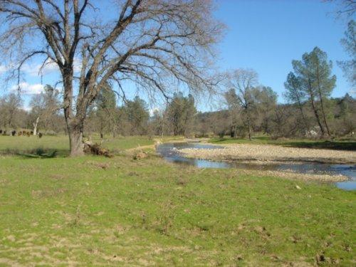 Swede Creek Ranch - Shasta County – Palo Cedro, CA - Photo 1