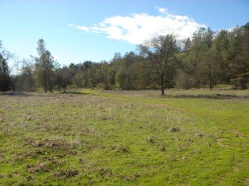 Swede Creek Ranch - Shasta County – Palo Cedro, CA - Photo 2