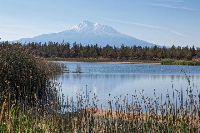 Lava Lakes Ranch - Photo 3